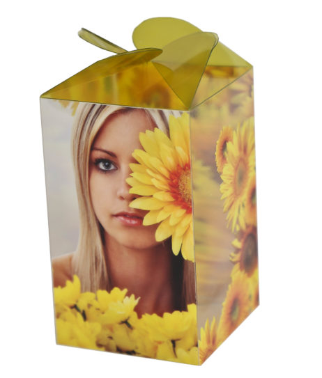 Custom Full-Color Poly Retail Packaging, Yellow Flower